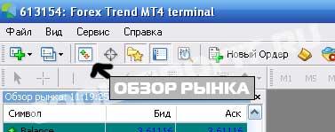 вызов окна обзор рынка по кнопке в программе Meta Trader для cool-profit.ru