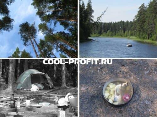 отдых дикарями памм инвестора (для cool-profit.ru)
