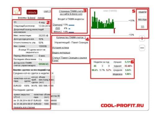подробная информация по счету на fastpamm.com для cool-profit.ru