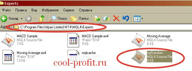 Перемещение советника в папку с MetaTrader (для cool-profit.ru)