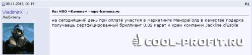 Комментарий на форуме ММГП о МПО Камена (для cool-profit.ru)