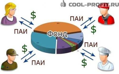 kollektivnye-investicii