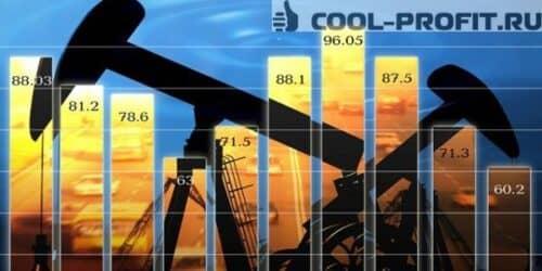 investitsii-v-neft
