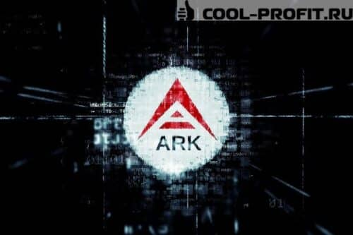 kriptovalyuta-ark