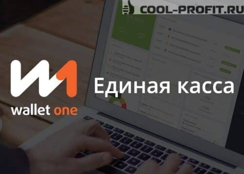 platezhnaya-sistema-wallet-one